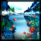 Real Fish Live Wallpaper Free
