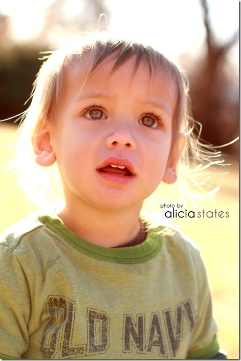 alicia-states-utah-kauai-family-photography027