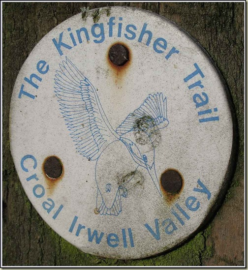 The Kingfisher Trail - logo