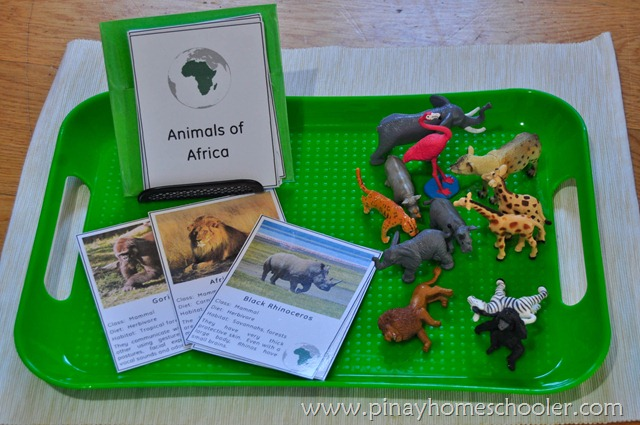 Animals of Africa Description Cards
