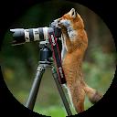 Image Google de Carole Delaruelle