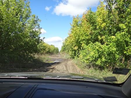 Drumuri basarabene