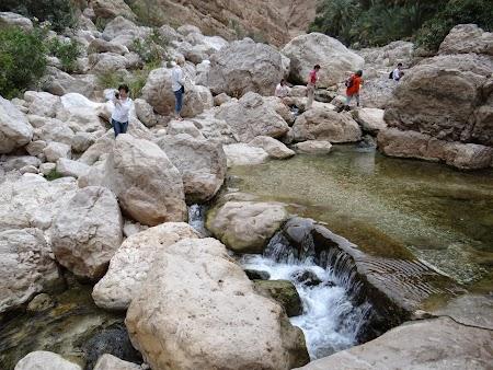 Stancile din Wadi Shab