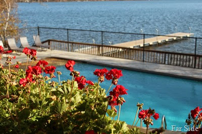 Flowers and pool and the lake