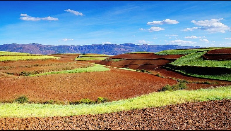 dongchuan-red-soil-6