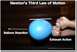 Newton's Laws of Motion from Half-A-Hundred Acre Wood