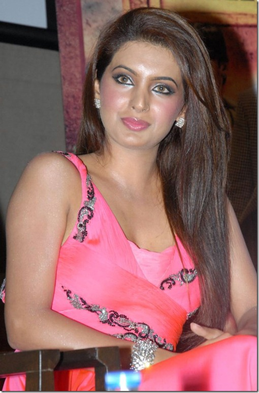 Bollywood Actress Basra Hot Pics at Zilla Ghaziabad Audio Launch