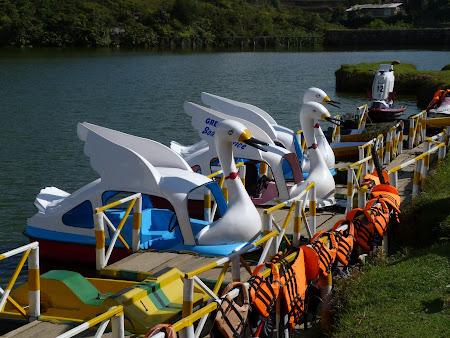 Turism Sri Lanka: ambarcatiuni lac Nuwara Eliya
