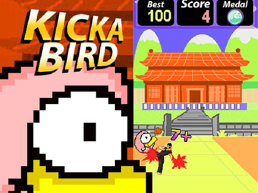 Kick a Bird