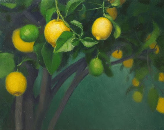 lemon tree 01 1k