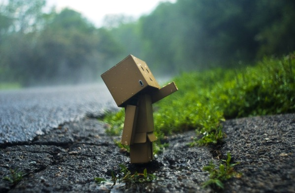 Danbo_Danboard_photo_130831