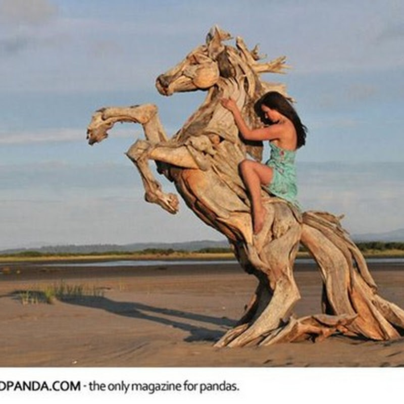 Incredible Driftwood Sculptures by Jeffro Uitto.