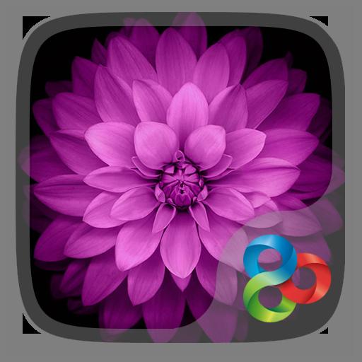Basic GO Launcher Theme LOGO-APP點子