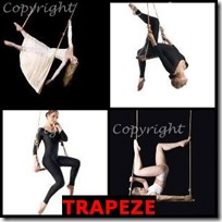 TRAPEZE- 4 Pics 1 Word Answers 3 Letters