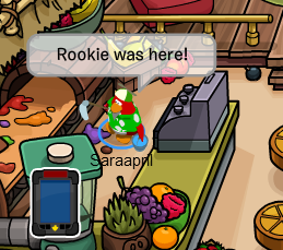 how to meet rookie on club penguin 2012
