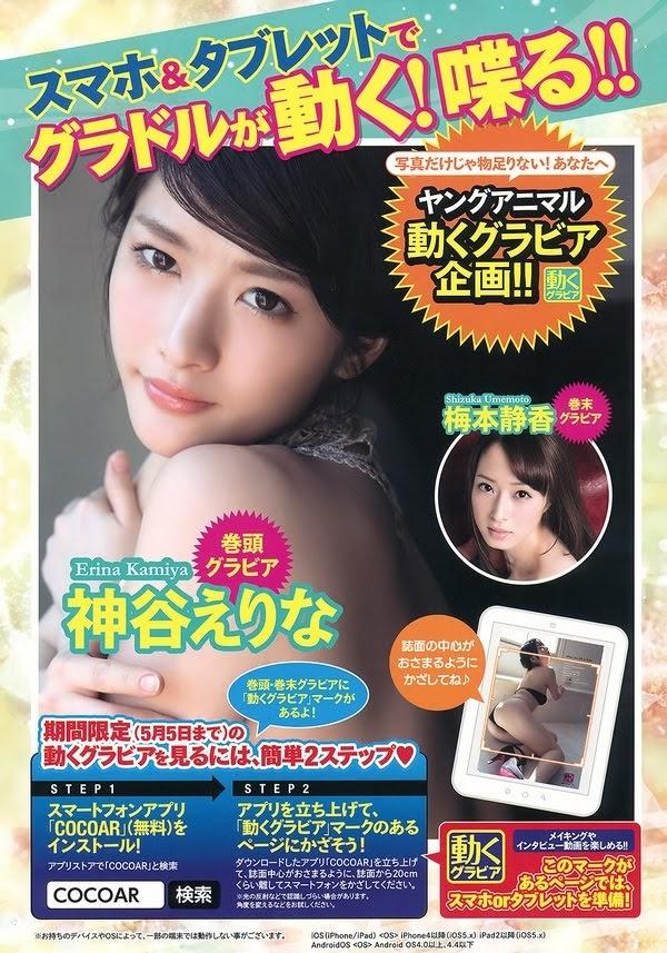 [Young Animal Arashi] 2016-05 - Erina Kamiya