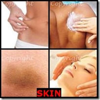 SKIN- 4 Pics 1 Word Answers 3 Letters