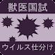 ウイルス仕分け-獣医国試