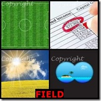 FIELD- 4 Pics 1 Word Answers 3 Letters