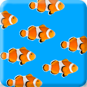 Fish School Live Wallpaper