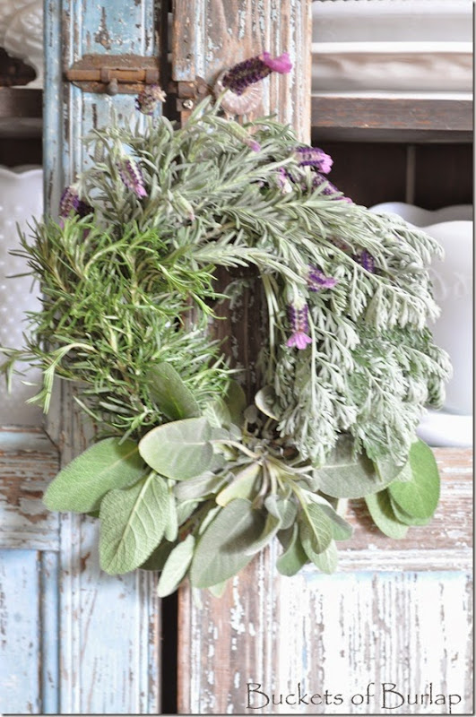 Herbs 9