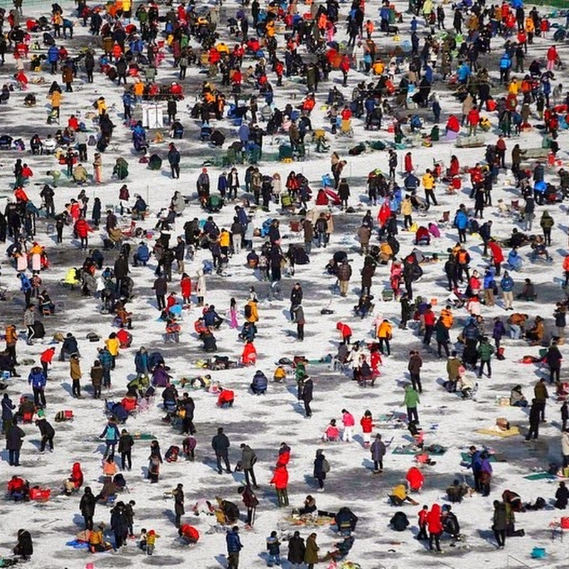 Ice fishing in South Korea's Hwacheon Sancheoneo Ice festival