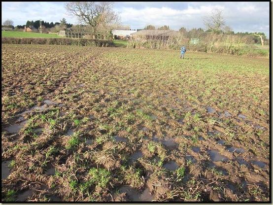 A gloopy field by Yew Tree Farm