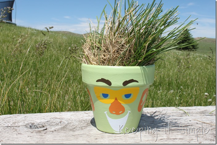 funny face pot (4)