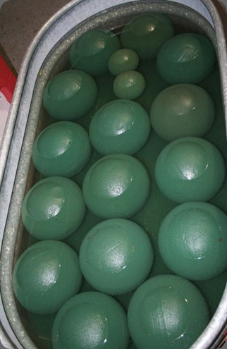 6a00e5508cf2b4883301538fadb248970b-500wi soaking oasis balls for centerpiences  rhonda patton designs