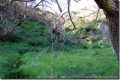 4879 Las Lagunetas-Los Arbejales