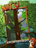 Screenshot of Nuts!: Infinite Forest Run