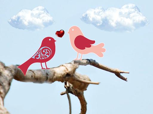 玩免費攝影APP|下載鸟贴纸 app不用錢|硬是要APP