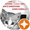 Image Google de Association Chats Angevins Sans Famille
