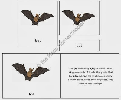 The Bat Preview