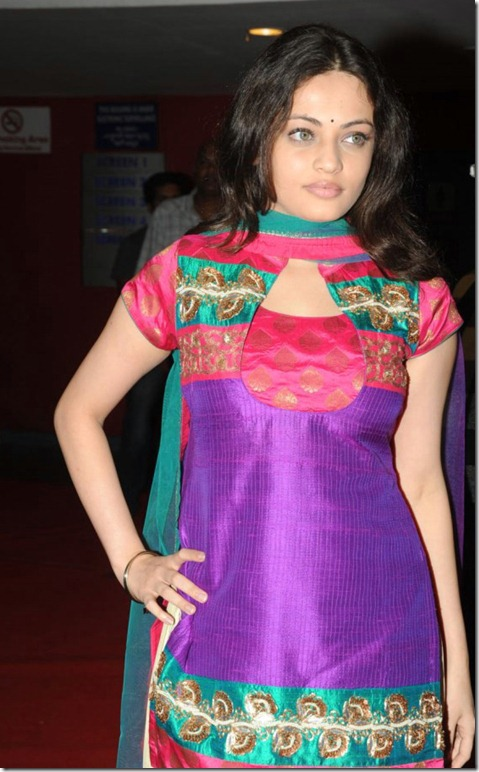 Actress Sneha Ullal Cute Photos at Action 3D Premiere Show