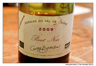 Bussiere_pinot_2009