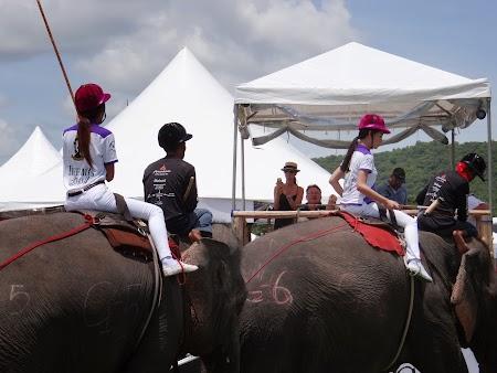 05. Ladyboy pe elefant.JPG