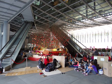 Anul Nou Chinezesc: Picnic la HSBC