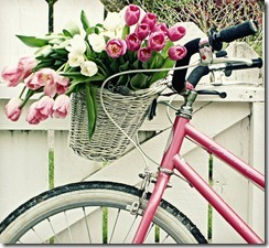 bicycle with tulips