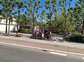 Cykeltur til GamMa-hyttetur 2014