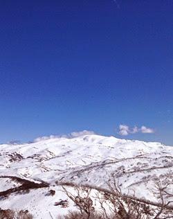 Snowy Peaks | Lavender & Twill