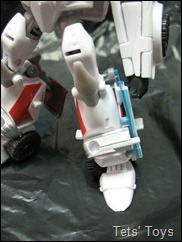 TFPrime ratchet (46)