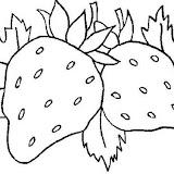 normal_13-coloriage_fruit.jpg
