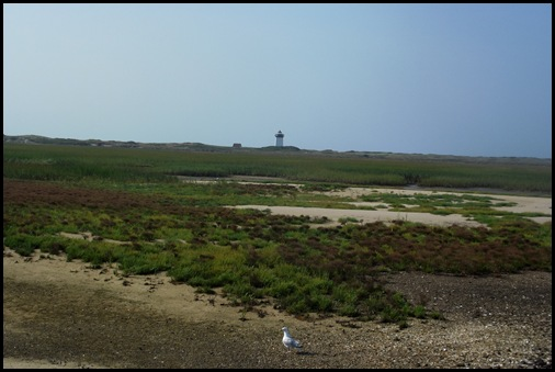 Provincetown 061