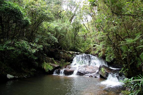 Cascade dans le Parc d'Andasibé-Mantadia (janvier 2011). Photo : Sylvain Ming (Panoramio - Google Earth)