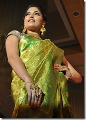 Parvathy Omanakuttan _cute_in_saree_still