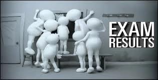 12th Arts result 2013   12 Arts Rajasthan Board Result.
