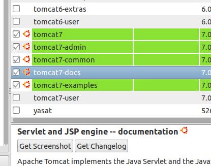 Installing Birt Viewer Server In Addition To Birt Study Designer 11