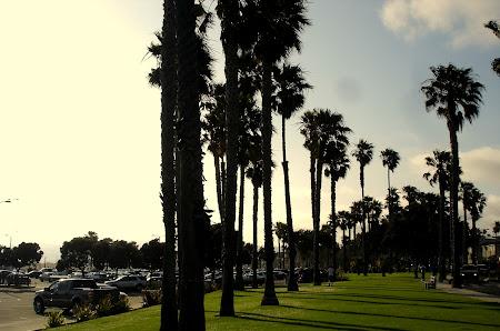 10. De la stanga la dreapta - ocean, plaja, parcare, iarba+palmieri.JPG