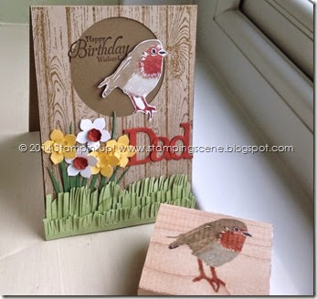 stampin up undefined robin spring card